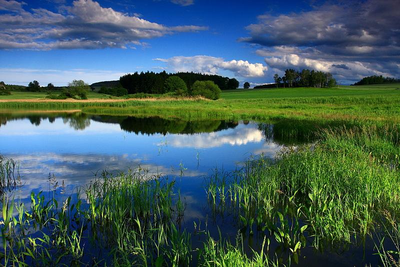 Dublinský rybník.